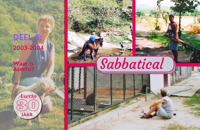 Jubileum blog deel 5 'Sabbatical en verlies'